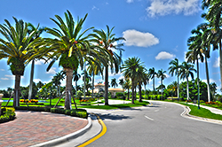 Woodfield Country Club Homes in Boca Raton